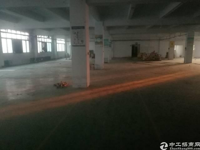 公明根玉路边大型园区楼上厂房2000平米-图3