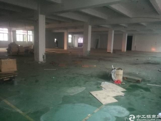 公明根玉路边大型园区楼上厂房2000平米-图5