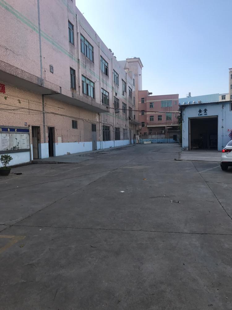 横岗沙河路边新出单层面积3000平大小分租一楼-图2