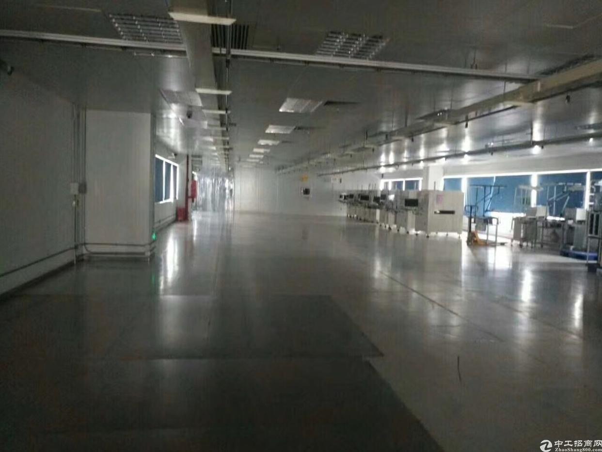 标准厂房楼精装修出租