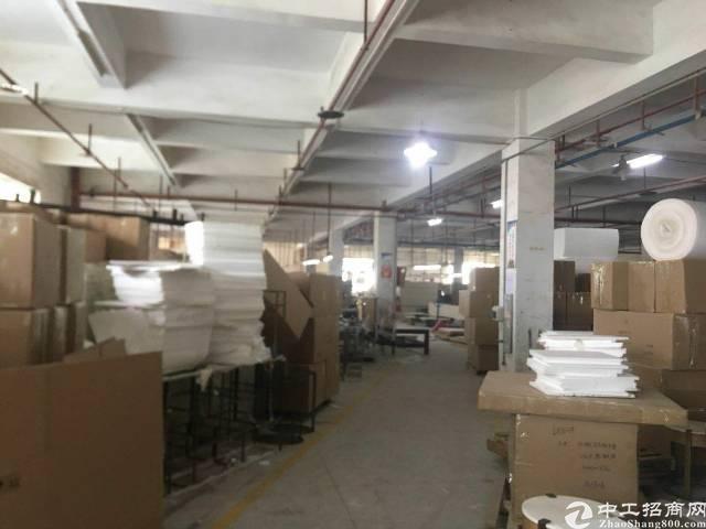 厚街新出一楼家具厂房1500平方米招租