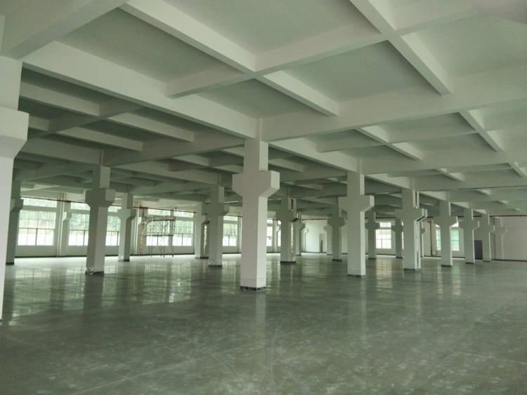 独院三层厂房-图2