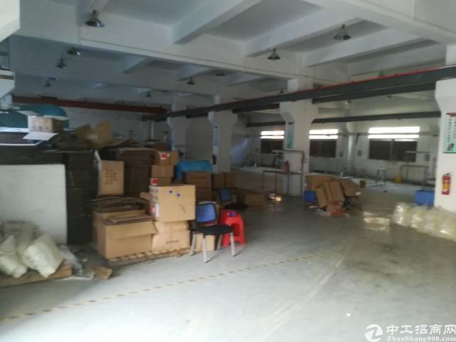 官井头小布工业区厂房-图2