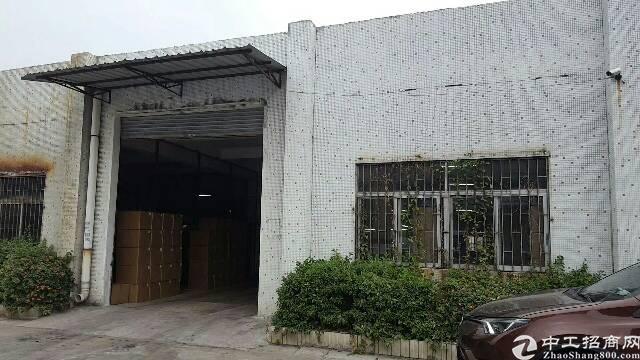 东莞市万江区电大标准单一层厂房出租