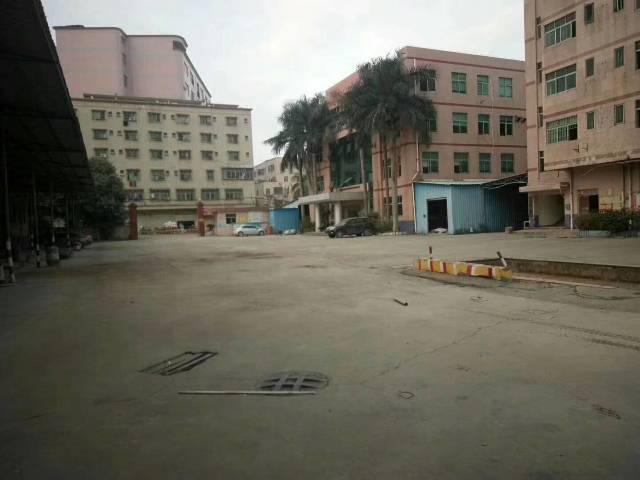 公明将石新出花园式独门独院钢构厂房10000平米-图2