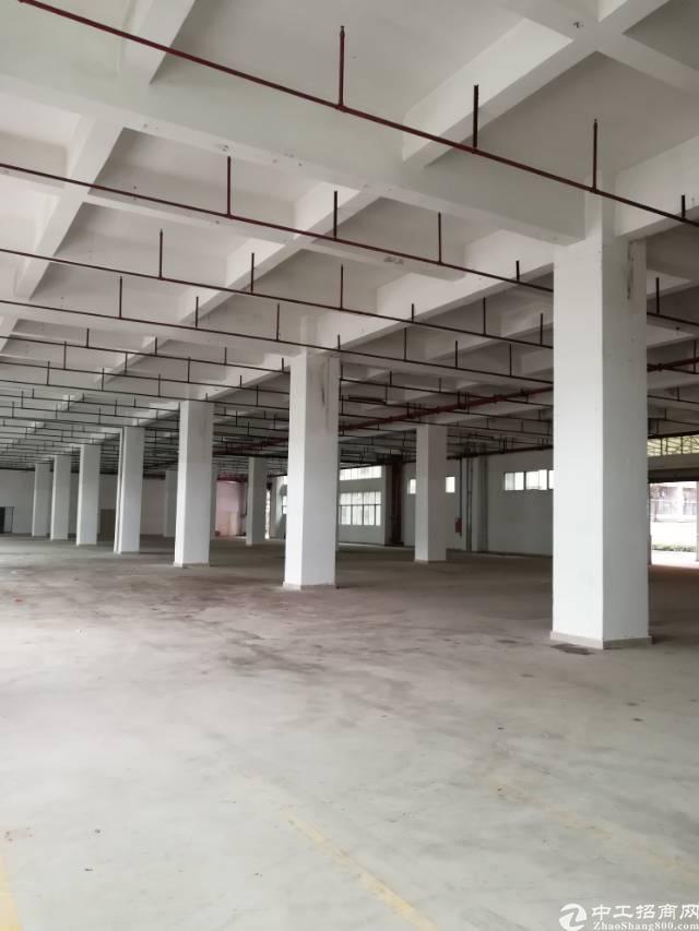 龙华新区新出厂房