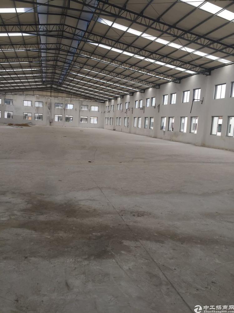 茶山独栋厂房,4600平方。