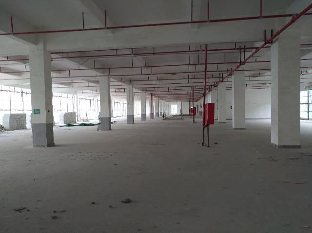 坂田杨美地铁站附近独门独院15200平米厂房出租