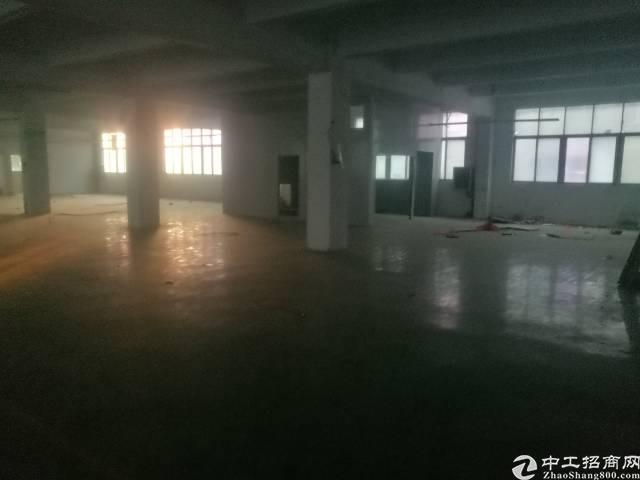 公明根玉路边大型园区楼上厂房2000平米-图8