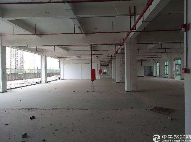 坂田杨美地铁站附近独门独院15200平米厂房出租-图5