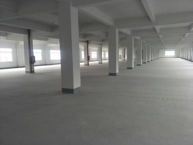 广州增城新出独院厂房7300平方招租-图5