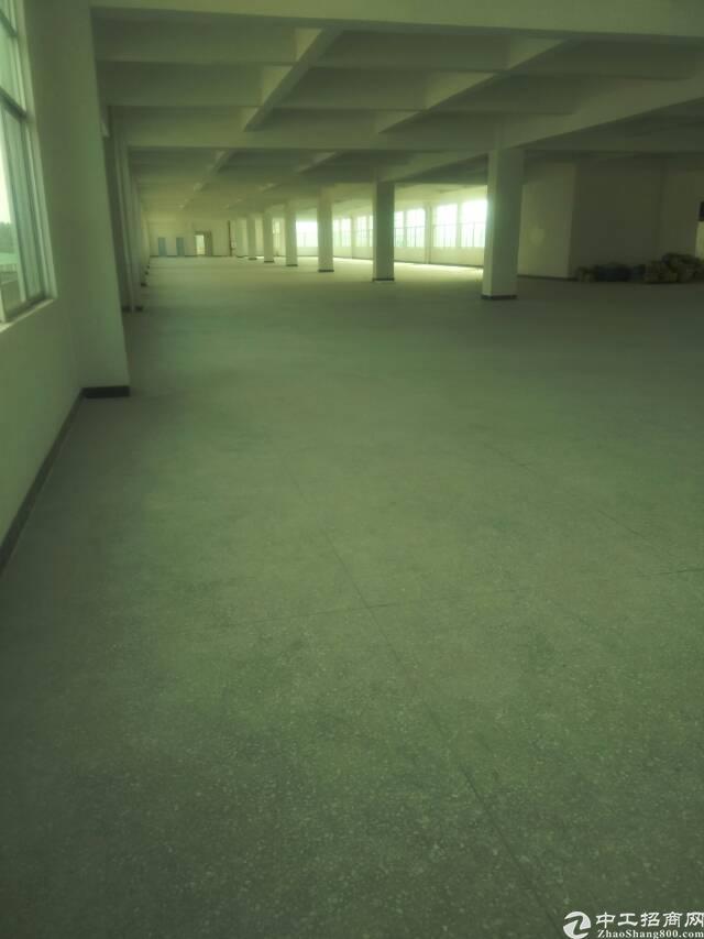 电子厂三楼出租