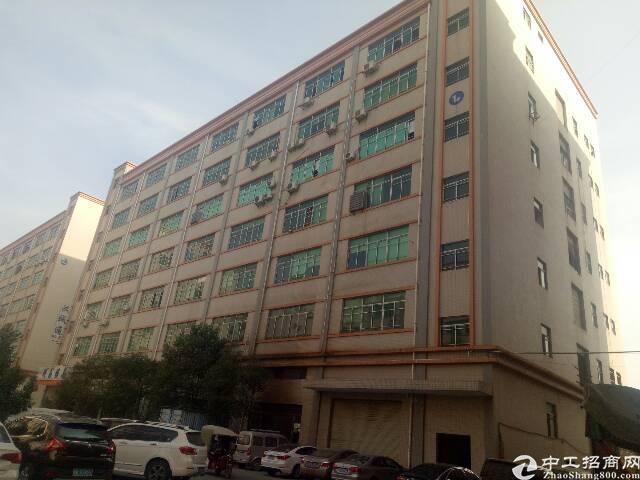(实际面积)沙井共和楼上整层1200平方装修厂房