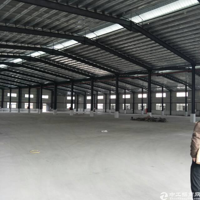 企石镇原房东全新钢构独院12000平方(空地3000平方)