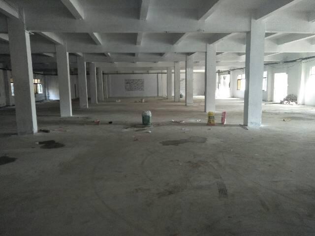 横沥新出独院厂房6300平方-图3