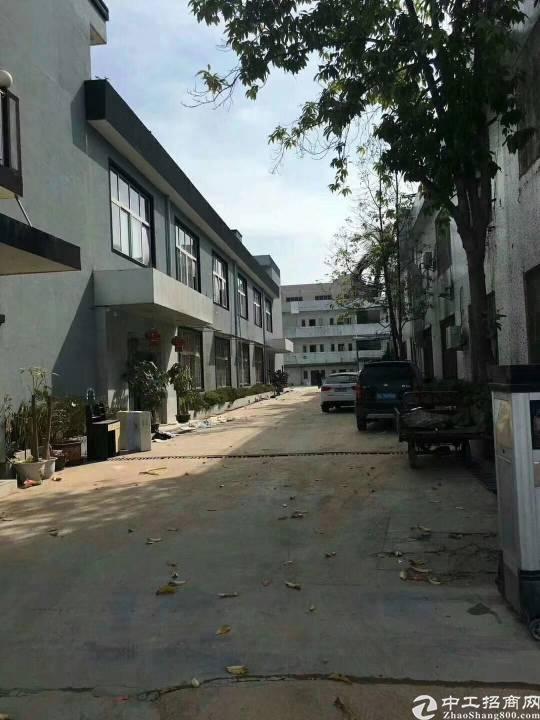 小独院  松岗中学附近,全新厂房1/2层2600m2,