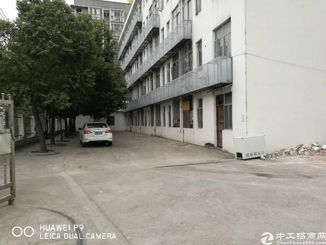 梅林关独栋厂房11000平-图5