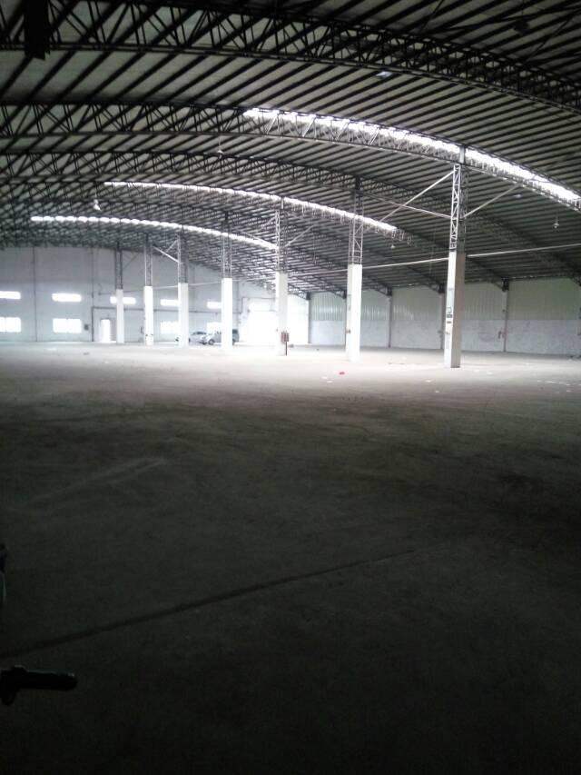全新独门独院钢构厂房