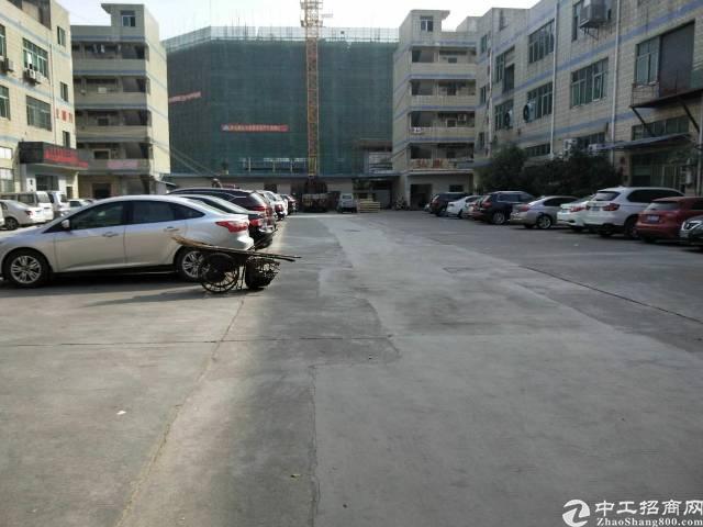 松岗新出主干道边新出一楼,一整层厂房招租。
