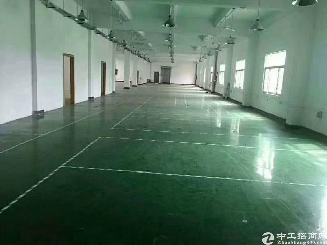 万江独院单一层一楼厂房