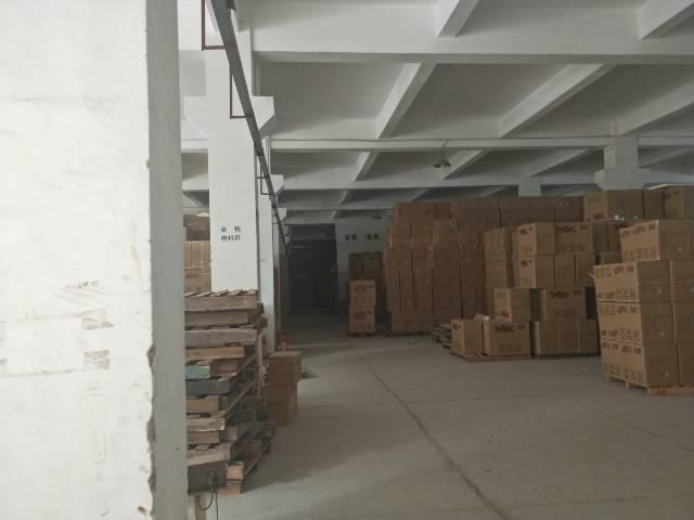 石排镇独院厂房分租一楼800平方