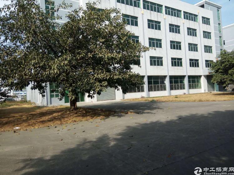 清平高速口新出原房东带装修1380平方米可分租