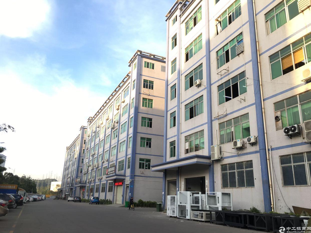 深圳公明主干道边上红本独院10栋厂房10万平方可分租