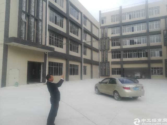 平湖观兰交界独院13700平可分租-图4