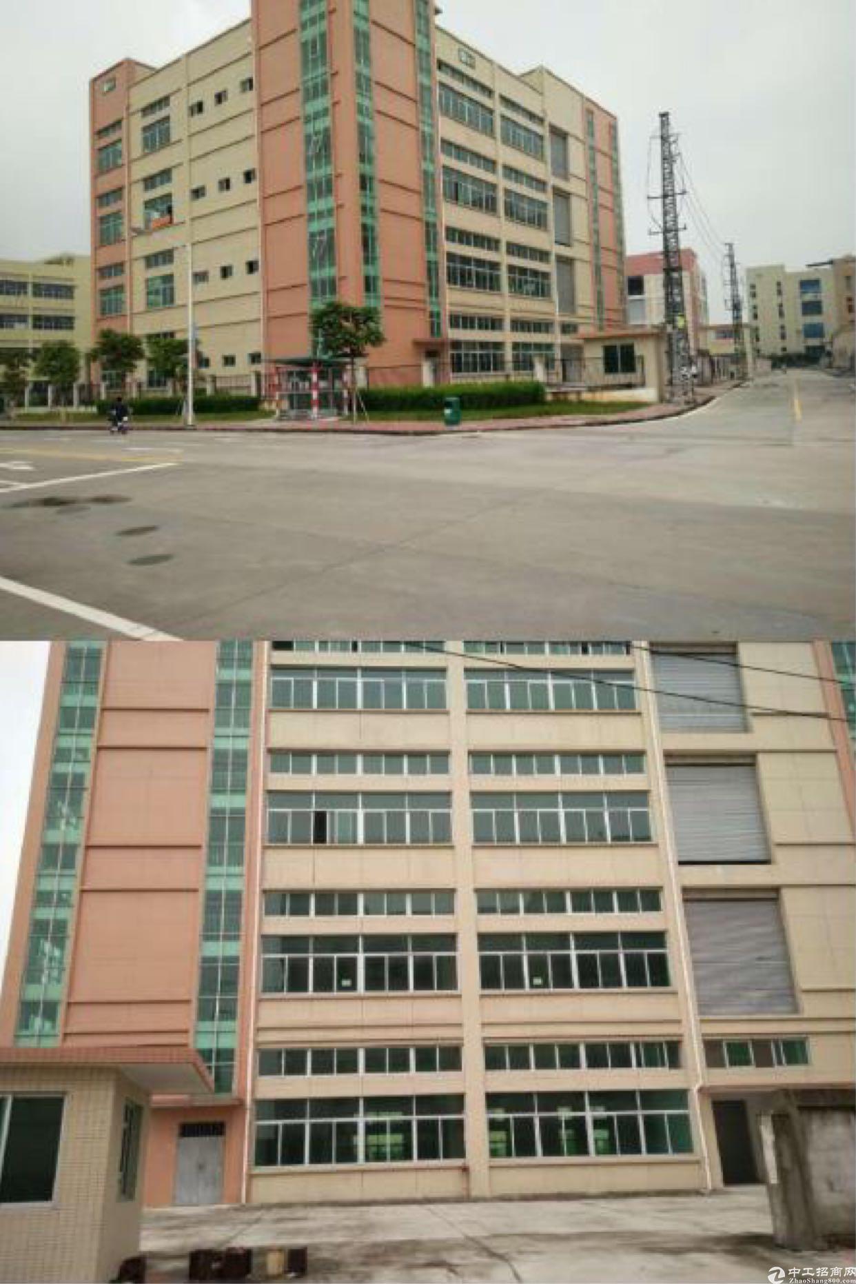 麻涌镇占地 3000 ㎡建筑 5000 ㎡国有厂房出售