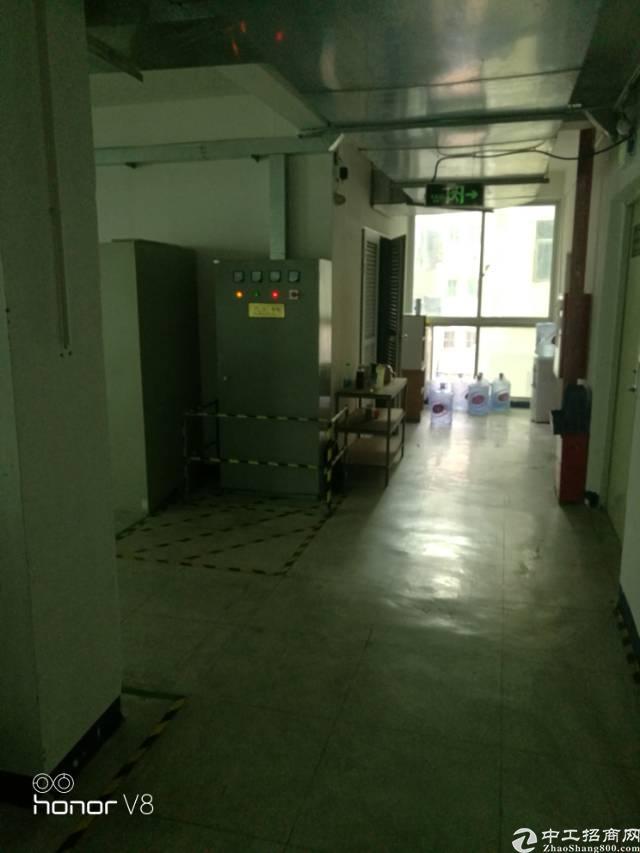 福永厂房出租  电子客户有装修-图3