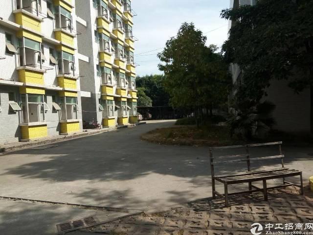 深圳龙岗区原房东红本厂房火热招租