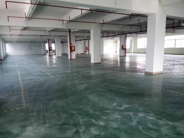 深圳龙岗区原房东红本厂房火热招租-图6