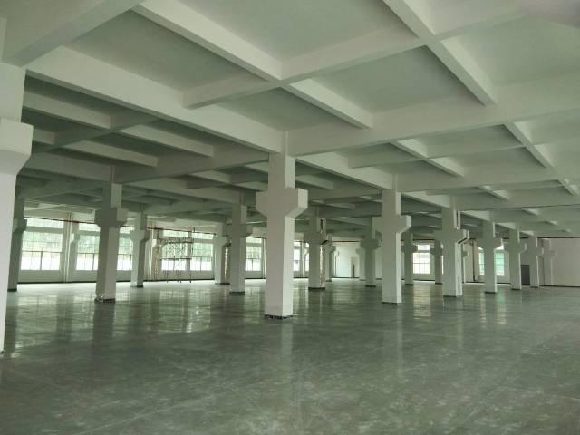 石排新出豪华全新高端独院厂房,1-3楼12000方