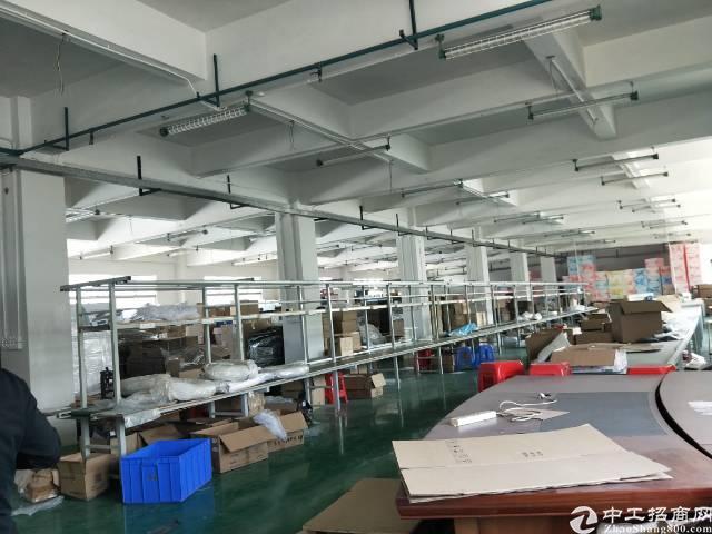 松岗龙大高速路口附近新出1500平米厂房