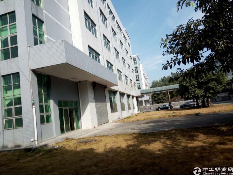 平湖华南城附近新出的独院厂房16000平方米出租