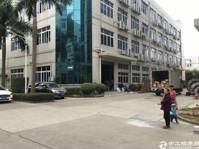 横岗横坪公路新出标准厂房四楼2250平米出租-图2