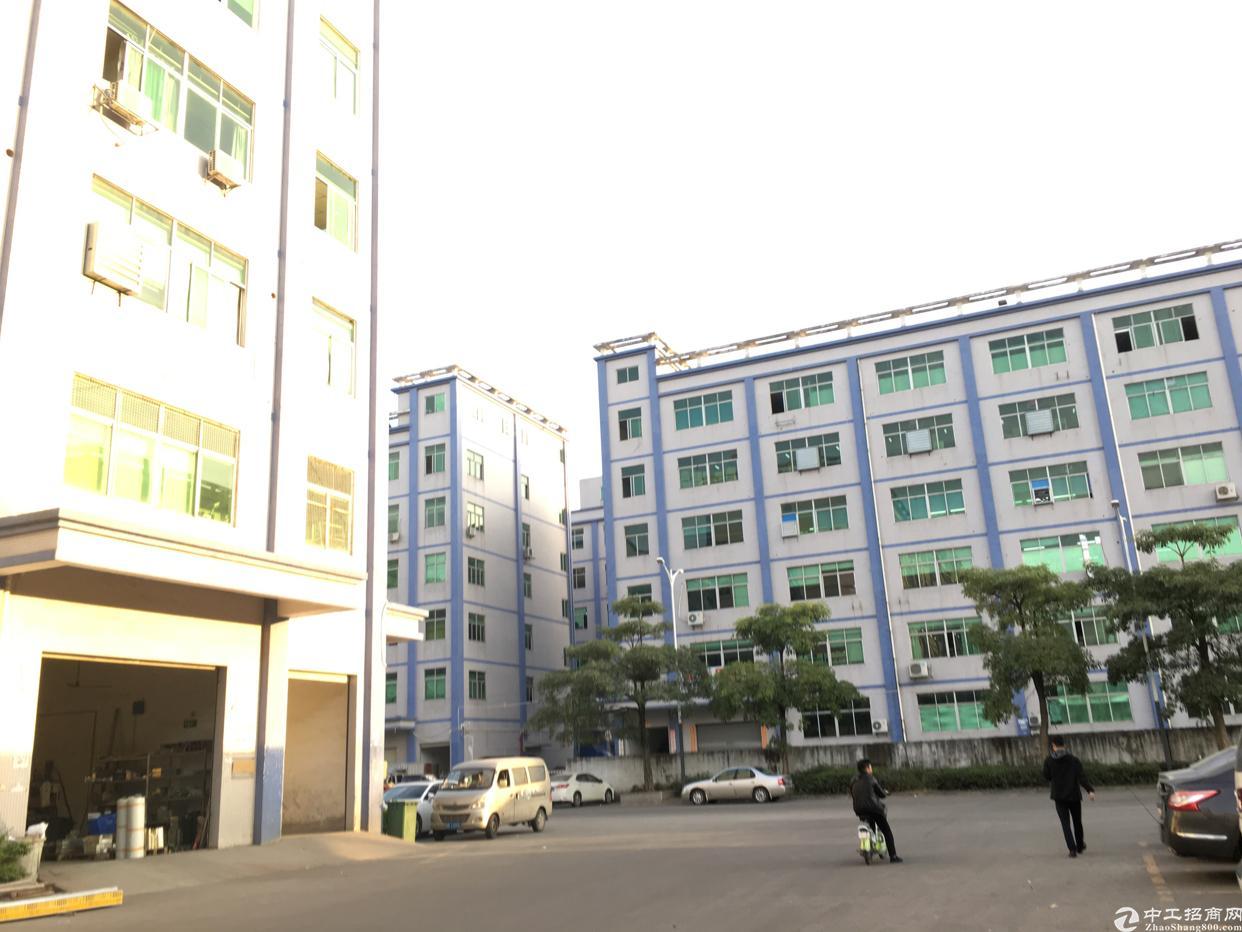 深圳公明主干道边上红本独院10栋厂房10万平方可分租-图5