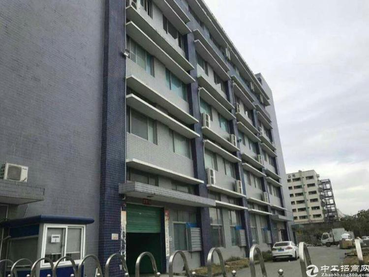 沙井后亭第二工业区独栋厂房2-5楼8000平方
