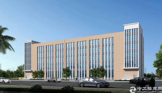 石排全新高端独院厂房,1-6楼15600方,可以分层租,单层