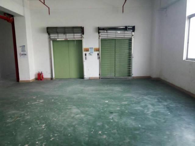 平湖辅城坳独栋厂房出租-图6
