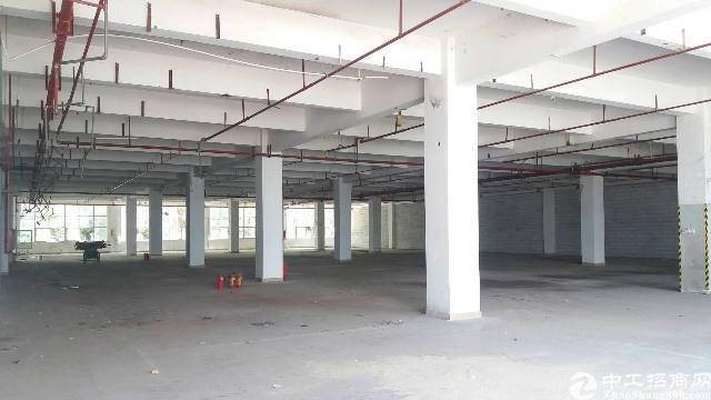 龙岗宝龙高新园区新空出一楼2500平方二楼4000平-图4