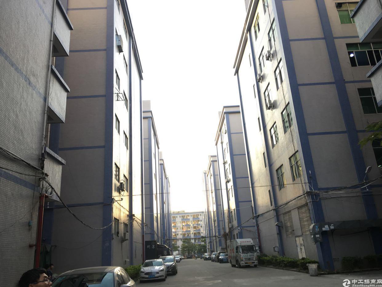 坂田华为附近或五和大道边新出楼上4-5楼每层880平方可分租