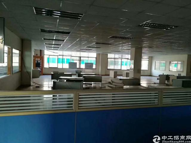 福永塘尾地铁口豪华装修厂房-图3