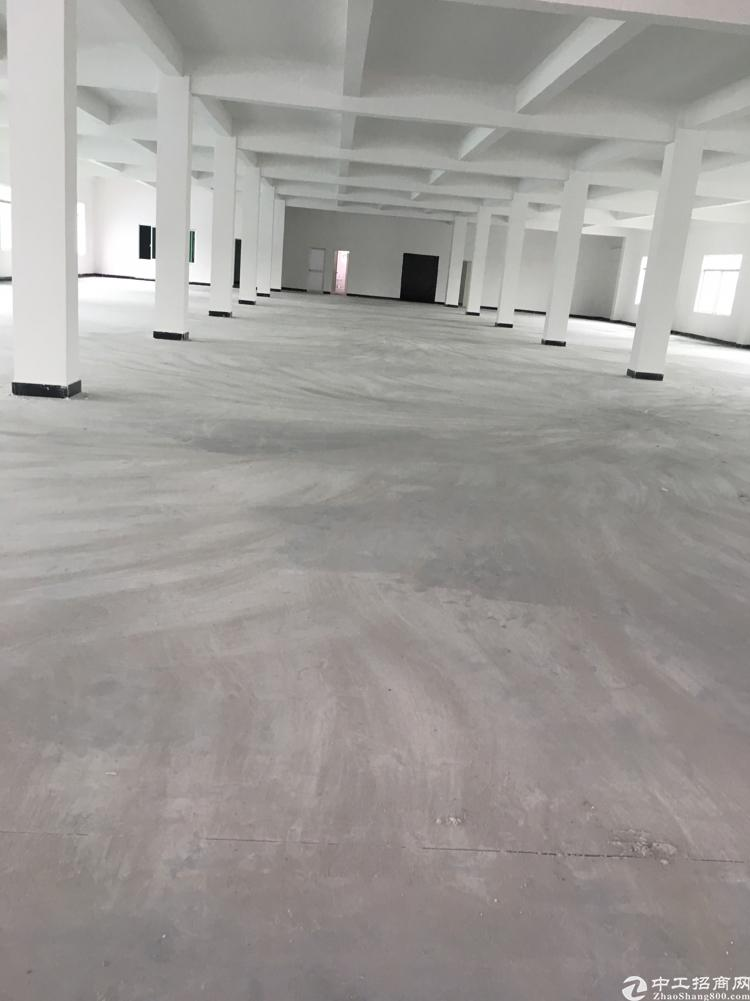 清溪近惠州两栋厂房13200平方出租,可分租-图3