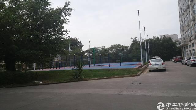 横岗永湖地铁口高新园区厂房招租1楼2250平方米-图3