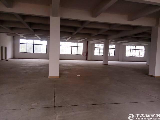 黄江镇新出独院厂房