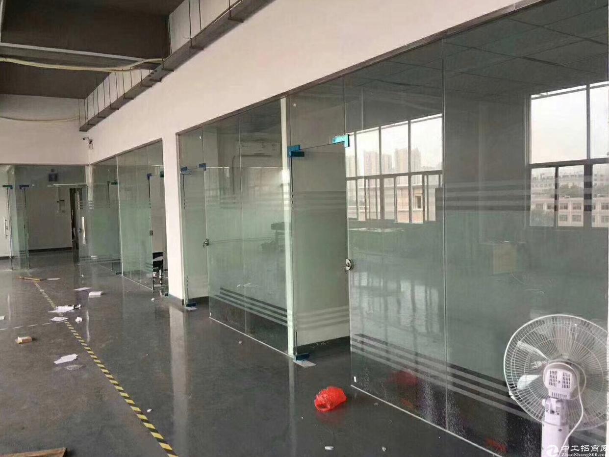 龙华新区精装修厂房出租,面积实在,无转让费-图5