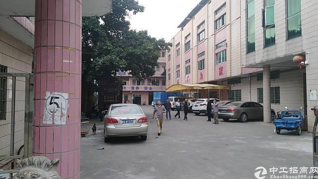 茶山镇独门独院厂房招租-图4