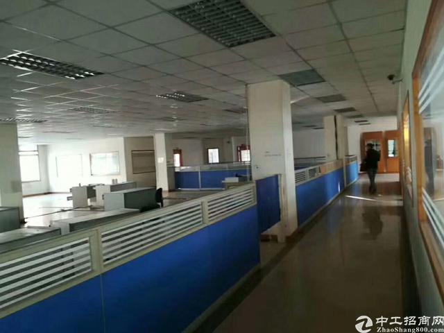 福永塘尾地铁口豪华装修厂房-图4
