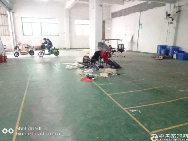 龙华民冶一楼900平厂房出租-图3